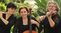 Saturday February 25, 2017  7:30 pm From Bach to Broadway Trio Ambiance Diane Caplette, flute Solange Bellemare, violin Iona Corber, cello […]